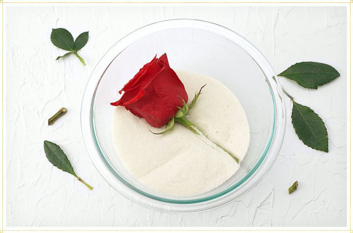 how to dry a rose in a clear bowl of silica sand or gel.