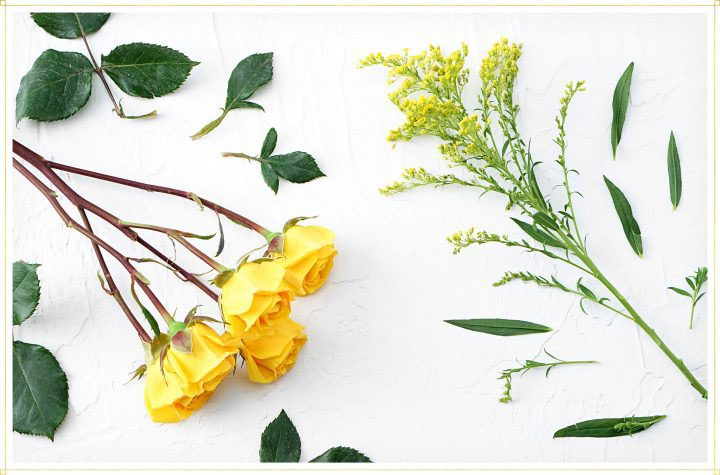 drying flowers step 1 - remove leaves from stems of flowers.